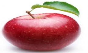 elma muhafaza koşulları