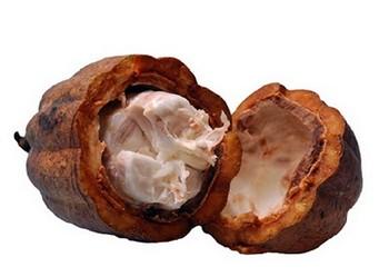 Kakao yağının zararları
