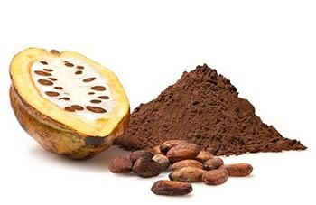 Kakao neye zararlıdır