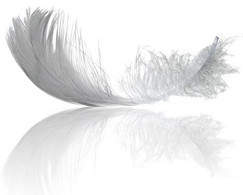 Kuş tüyü mont