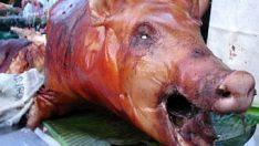 Domuz Etinin Zararları