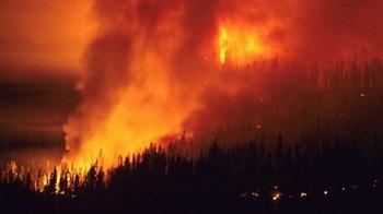 Orman yangınlarının nedenleri
