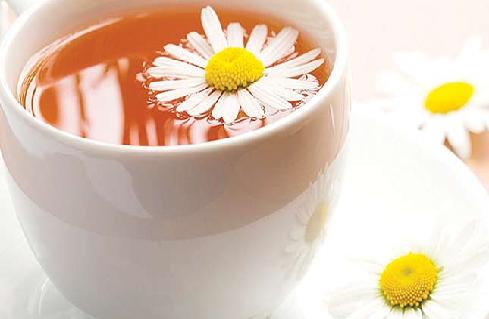 Papatya Çayı Bilinmesi Gerekenler
