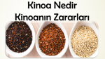 Kinoa Nedir? Kinoanın Zararları